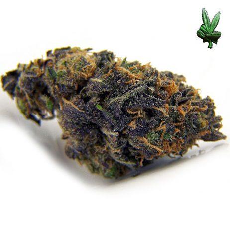 1 Ounce Purple Kush (Indica)