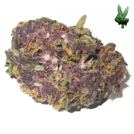 1 Ounce Grandaddy Purple (Indica)